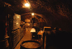 cave vigneronne authentique